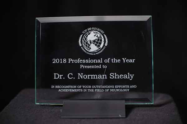 2018 Professional of the Year